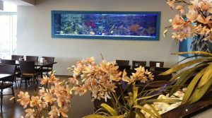 Holding Merkezi – Canlı Resif / Deniz Akvaryumu