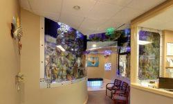 deniz akvaryumu ticari